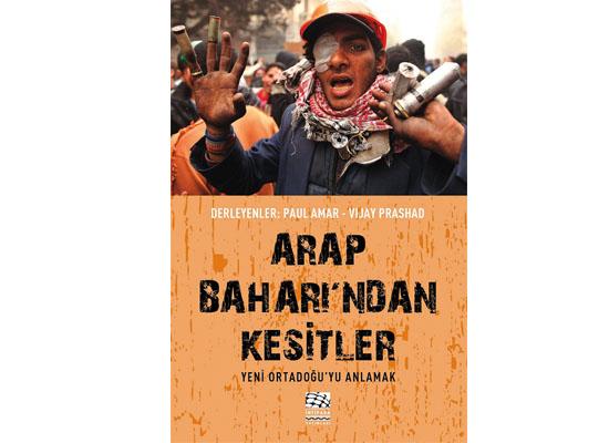 'Arap Baharı'nı yeniden düşünmek