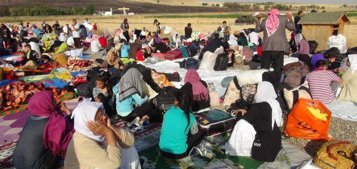Feleknas Uca: Karanlık güçler Ezidileri göçe zorlamak istiyor