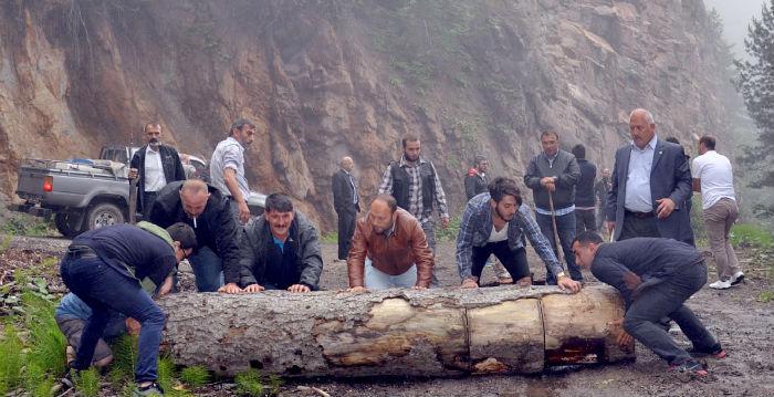 Başbakanlık: Cerattepe'deki inşaat hukuki süreç sonlanıncaya dek duracak