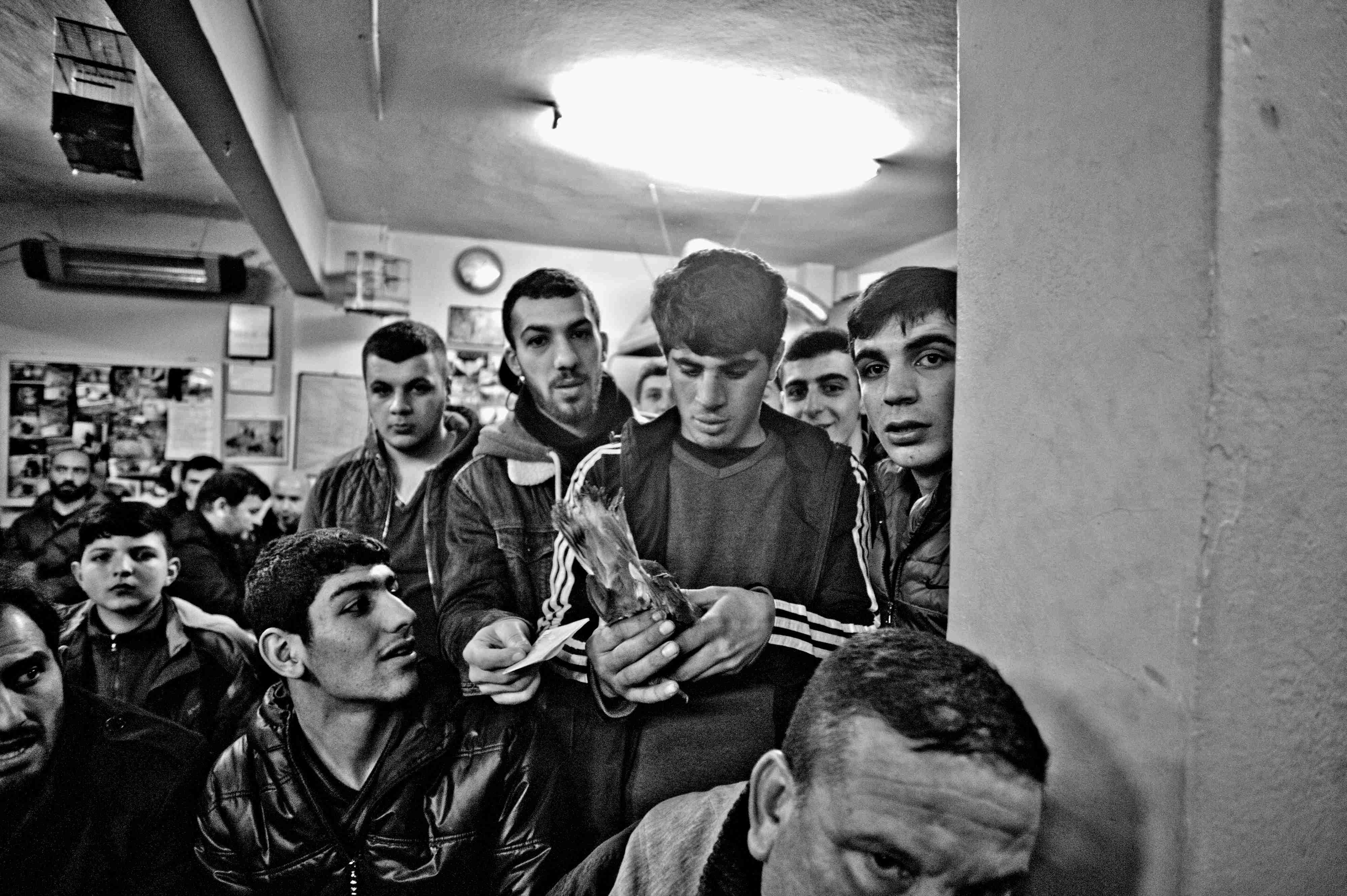 """Kemal Ağabey, bu işin artık çocuğa düştüğünü söylüyor, özellikle de İstanbul'da, """"Çok gençler… Çocuk haftalığını getiriyor bırakıyor mezatta, anlamıyor da, bilmiyor da…"""