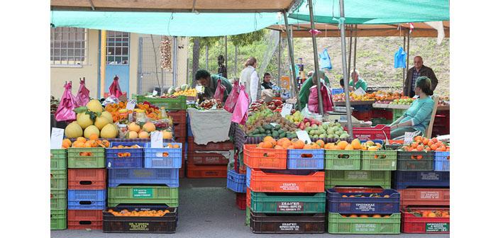Güney Kıbrıs'tan Rum ve Ermeni genç çiftçilere destek