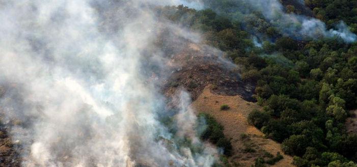 Ermenistan'ın ciğeri yandı