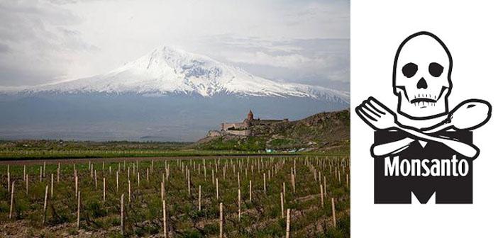 Çevre örgütlerinden Monsanto'ya çağrı: Ermenistan'a gelme