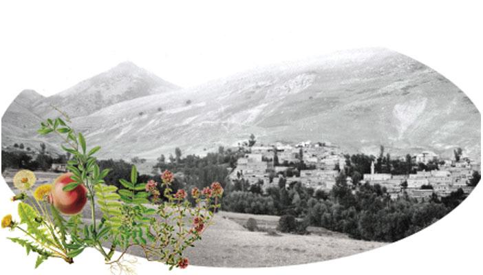 Պոլսոյ պատմիչը 90 տարեկան