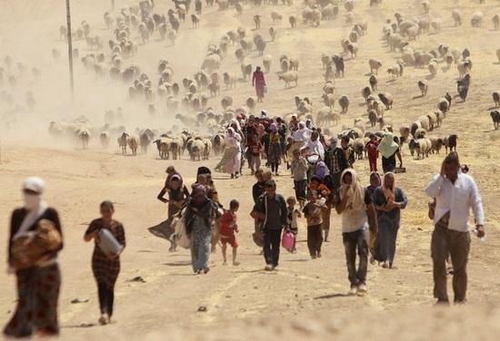 Ermenistan'dan Iraklı Ezidilere yardım eli
