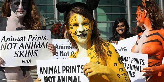 Wikileaks: 'Coca Cola, PETA'yla ilgili özel istihbarat aldı'